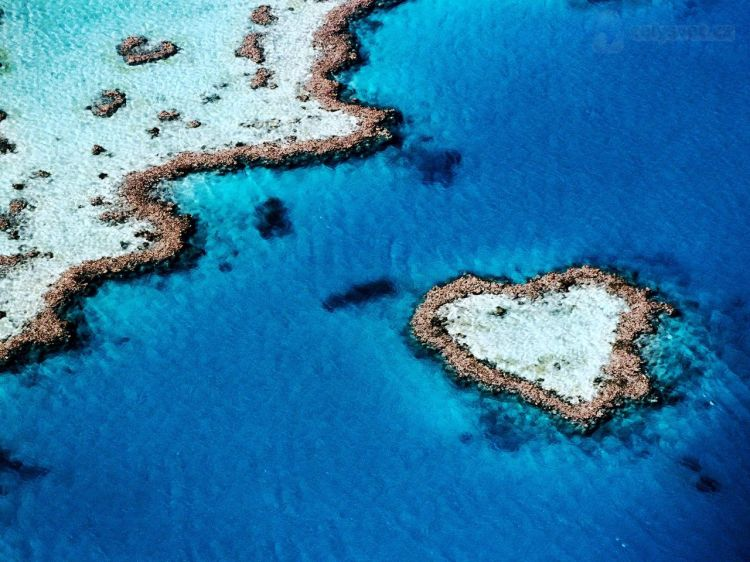 heart-shaped-reef--hardy-reef-whitsunday-islands-queensland-australia